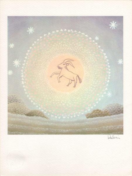 segni dello zodiaco capricorno